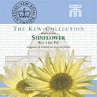 Kew Seed Collection - Sunflower Key Lime Pie