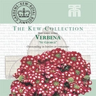 Kew Collection - Verbena St George Seeds