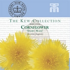 Kew Collection - Cornflower Dairy Maid Seeds