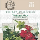 Kew Seed Collection - Wildflower Fragrant Mixture