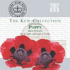 Kew Seed Collection - Poppy (Papaver) Bracteatum
