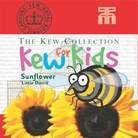 Kew for Kids - Sunflower Little Dorrit Seeds