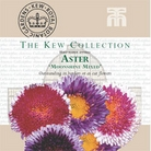 Kew Collection - Aster Chinensis Moonshine Mixed Seeds