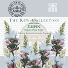 Kew Seed Collection - Lupin Dwarf Fairy Pink