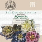 Kew Seed Collection - Aquilegia Sweet Rainbows