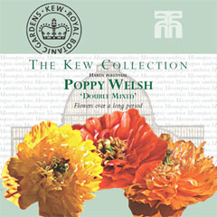 Kew Collection - Poppy (Meconopsis) cambrica Double Mixed Seeds