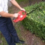 Greenfingers 550W Hedge Trimmer