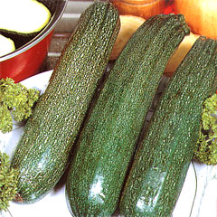 Vegetable Seeds - Courgette All Green