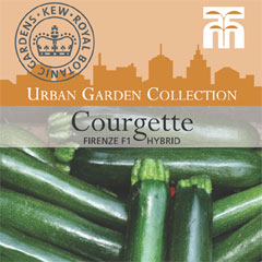 Urban Seed Collection - Courgette Firenze