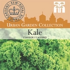 Urban Seed Collection - Kale Starbor