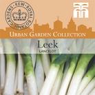 Urban Seed Collection - Leek Lancelot