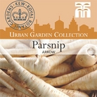 Urban Seed Collection - Parsnip Arrow