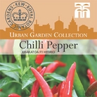 Urban Seed Collection - Chilli Pepper Krakatoa