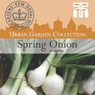 Urban Collection - Spring Onion Pompeii Seeds