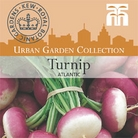 Urban Seed Collection - Turnip Atlantic