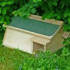FSC Hedgehog Habitat