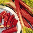 Fruit Seeds - Rhubarb