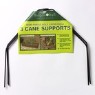 Cane Supports - 3 pack