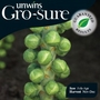 Brussels Sprout Seeds: Cronus (Gro-sure)