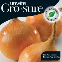 Onion (Japanese) Hi Keeper Seeds (Gro-sure)