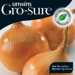 Onion (Japanese) Hi Keeper Seeds (Gro-sure)