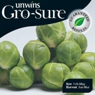 Brussels Sprout Petrus Seeds (Gro-sure)