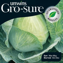Cabbage Cilion Seeds (Gro-sure)