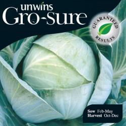 Cabbage Kilazol Seeds (Gro-sure)