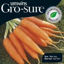 Carrot Resistafly Seeds (Gro-sure)