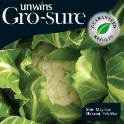 Cauliflower Clemen Seeds (Gro-sure)