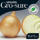 Onion Wellington Seeds (Gro-sure)