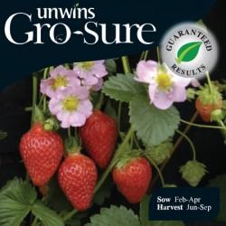 Strawberry Florian Seeds (Gro-sure)