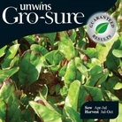 Swiss Chard Galaxy Seeds (Gro-sure)
