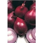 Onion  Red Baron x 150 Seeds