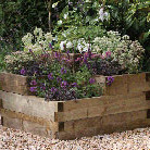 Caledonian tiered raised bed