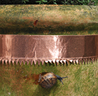 Copper snail and slug tape