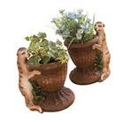 Meerkat Planters - Set Of Two