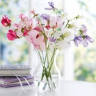 Scented Silk Sweet Peas - In A Vase