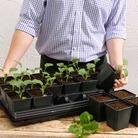 Vegetable Growing Set