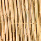 Bamboo Garden Screening - 1.5 x 3m