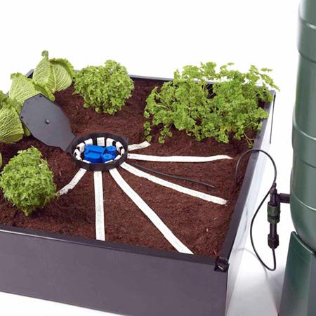 Aquabox Spyder Self-Watering System