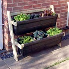 4 Tier Lean-To Ladder Allotment