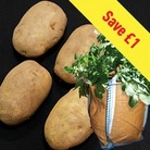 Arran Pilot (1kg) Seed Potatoes Plus 3 Patio Planters