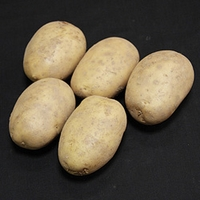 Maris Piper Seed Potatoes (1kg)
