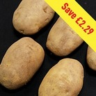 Arran Pilot Seed Potatoes (2kg)
