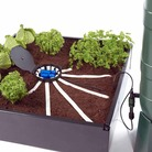 Aquabox Spyder Self-Watering System