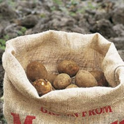 Hessian Potato Storage Sacks x5