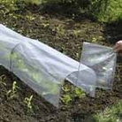 Sectional Tunnel Cloches - Replacement Polythene Pack