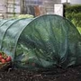 Easy Netting Tunnel - Standard