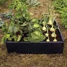 Raised Bed Kit (Pack of 2)